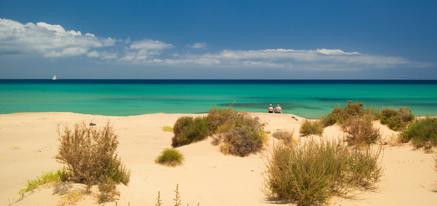 Rent a Car Fuerteventura